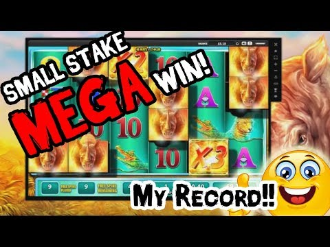 Raging Rhino Online Slot – Super Mega Big Win – My Low Stakes RECORD!