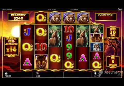 Buffalo Rising Slot – Mega Win – Storvinst – Big Win Demo*