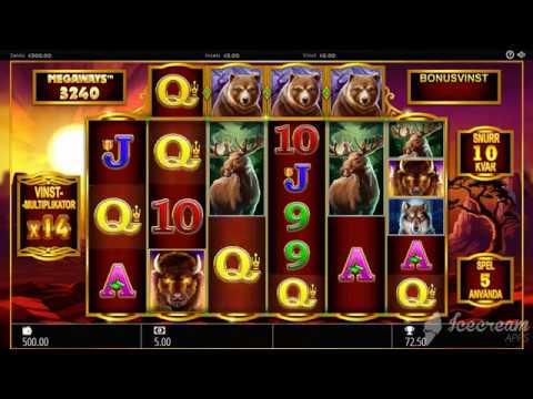 Buffalo Rising Slot – Mega Win – Storvinst – Big Win Demo*