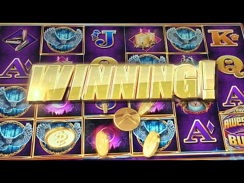 WINNING at the Casinos! Slot Machine Bonuses and Big Wins