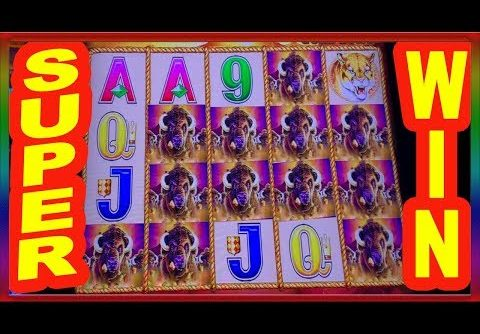 ** SUPER BIG WIN  ** BACK TO BACK GREAT HITS ON BUFFALO GOLD ** SLOT LOVER **
