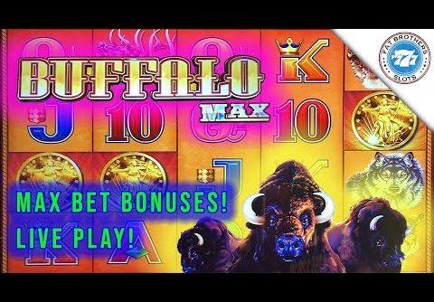 Super Fun Buffalo Max Slot Live Play Session! Big win to start! D-Gen Max Bet Bonuses!