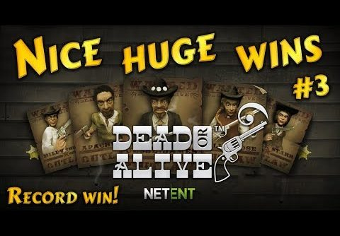 Nice huge wins on Dead or Alive slot #3, record win! Netent