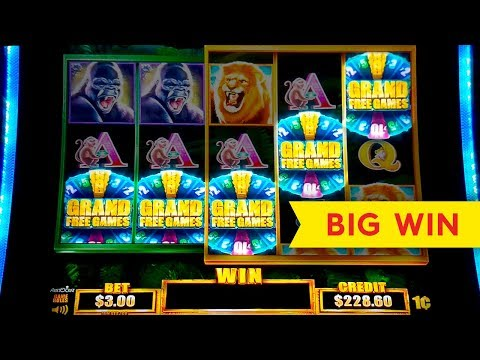 Tarzan Grand Slot – 5 SYMBOL TRIGGER – BIG WIN BONUS!