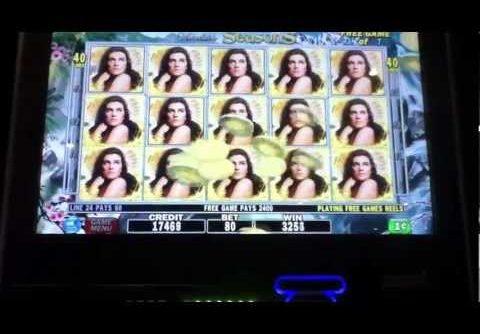 Slot machine mega jackpot win