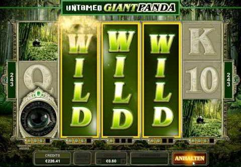 Untamed Giant Panda Slot – 2x Super Mega Win