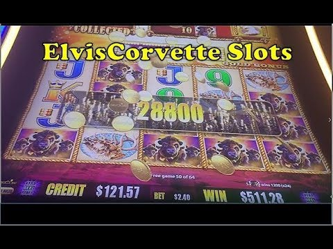 Buffalo Gold | Mega Big Win | Thanks To Tito's Slots Videos