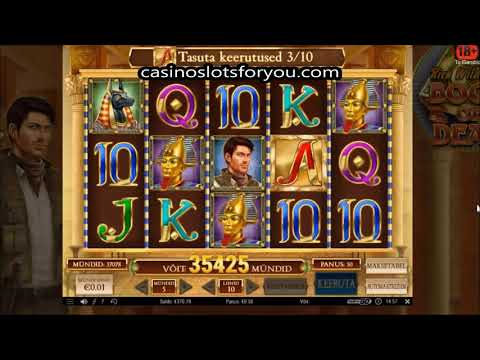 Book of Dead Slot Wildline MEGA Big WIn