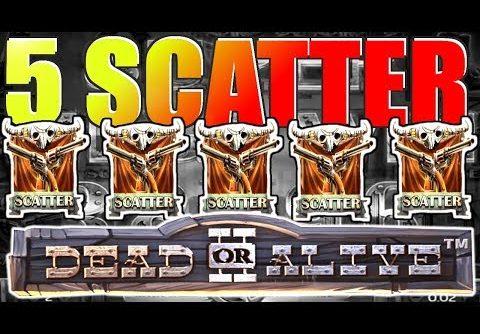 Dead or Alive 2 Slot 5 Scatter MEGA BIG WIN 2507x