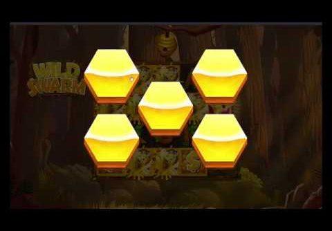 Wild Swarm Slot Big Win Compilation    Push Gaming