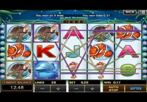 BIG WIN with DOLPHIN REEF Online Slot Game | SCR888 Online Casino Malaysia | BigChoySun