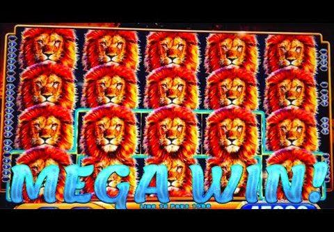 FULL SCREEN MEGA HUGE WIN!!! KING OF AFRICA SLOT MACHINE!!!