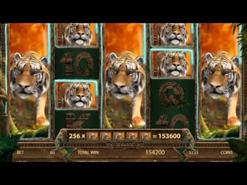 Jungle Spirit: Call of the Wild Slots And Record Win / This Is Super Mega Win Ever