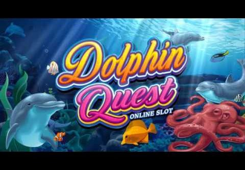 Microgaming Dolphin Quest Slot Review: Big Wins, Jackpots, Bonus Rounds