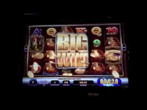 Massive Casino Slot Machine Wins Compilation   Biggest win 2 8 million Jackpot win!