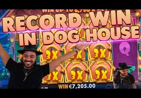 ROSHTEIN Top 3 Record  Wins on The Dog House slot