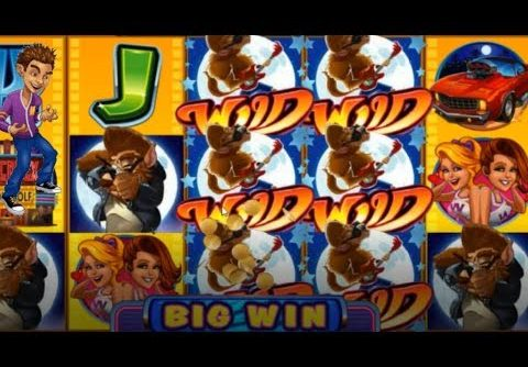 Big Win on Cool Wolf Slot from Microgaming