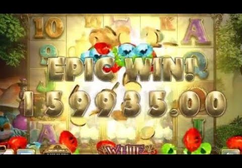 MUST SEE!!! TOP 3 HUGE WIN ON WHITE RABBIT SLOT – RECORD WIN 4036X !!!