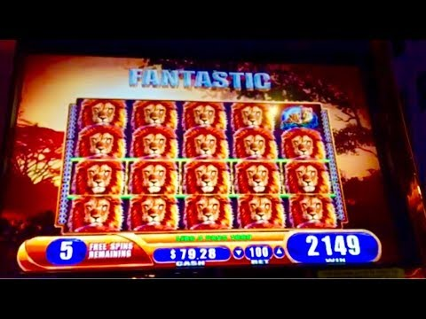 HUGE MEGA WIN BONUS!!! LIONS EVERYWHERE!!! KING OF AFRICA SLOT MACHINE!!!