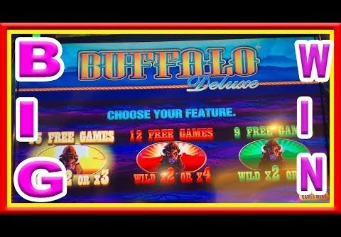 ** HOW MUCH DO YOU THINK I WON ON 58 FREE GAMES ON BUFFALO DELUXE ** SLOT LOVER **