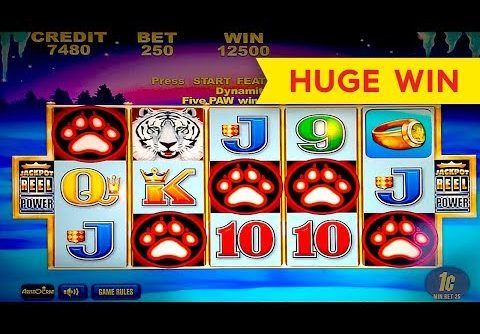 White Tiger Slot – 5 SYMBOL TRIGGER – BIG WIN BONUS!