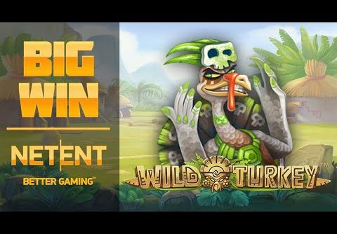 Big win in Wild Turkey slot | NetEnt