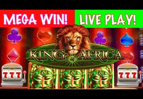 LIVE PLAY + MEGA WIN!!! King of Africa Slot Machine!!!