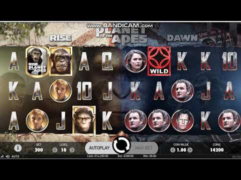 SUPER BIG WIN  Play Planet of the Apes  | NetEnt – BIG WIN 595