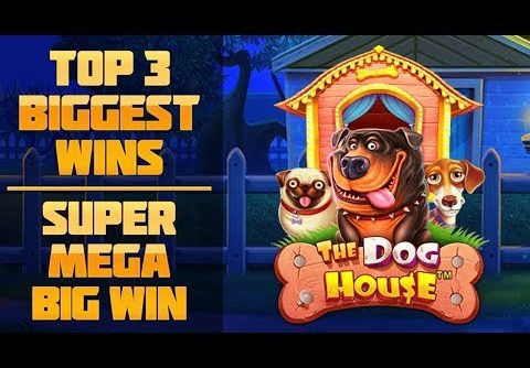 Top 3 biggest wins in June – Epic win. The Dog House slots