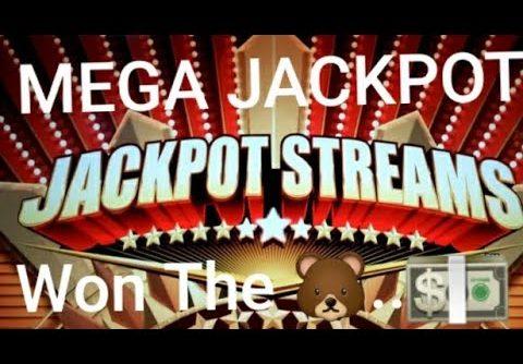 "Jackpot Streams 🐻💰""MEGA WIN!!"" 🐻💰…Mini🍀 Major💎Winz Too…💵🐻💎🍀💵😱😃🤪🤫🤦♂️💁♂️🤷♂️"