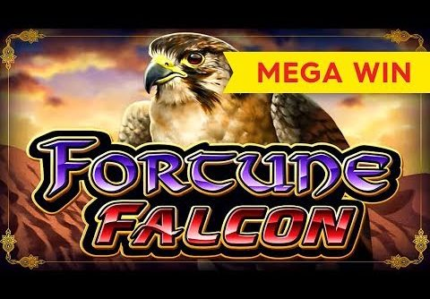 Fortune Falcon Slot – MEGA BIG WIN!
