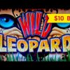 Wild Leopard Slot – RETRIGGER, BIG WIN SESSION – $10 Bet!