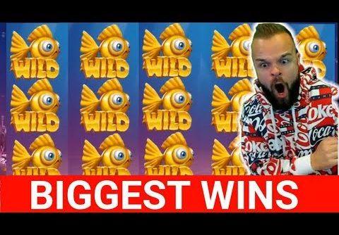 ONLINE CASINO WINS #15 JJCASINO & CLASSY BEEF DESTROYS REACTOONZ MEGA WIN