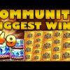 Community Biggest Wins #49 / 2019