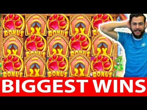 ONLINE CASINO WINS #10 reactoonz & the dog house AMAZING MEGA WIN