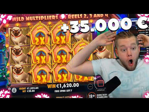 ClassyBeef Record Win 35.000€ on The Dog House slot – TOP 5 Biggest wins of the week
