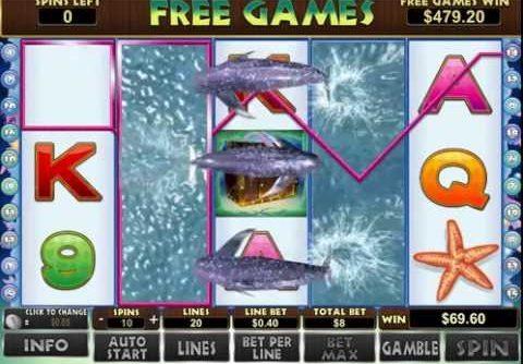 Dolphin Reef Slot – Mega Big Win