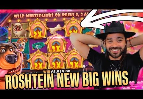 ROSHTEIN  new mega wins on The Dog House slot – Top 5 Best Wins of week