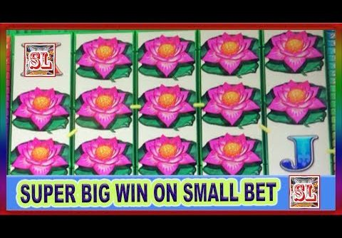** Wife's SUPER BIG WIN on a Small Bet ** PANDA POWER  ** SLOT LOVER **