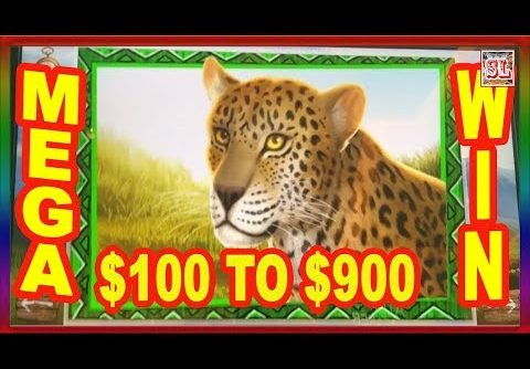 ** MEGA WIN ** $100 To $900 IN 5 Minutes ** SLOT LOVER **