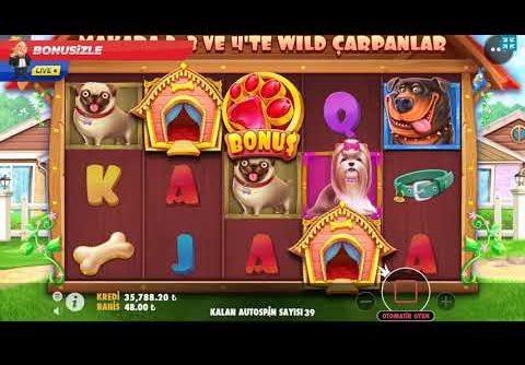 Bonusizle Slot | Dog House Havlayan Köpek Isırmaz Megawin!!! #Slots #bigwin