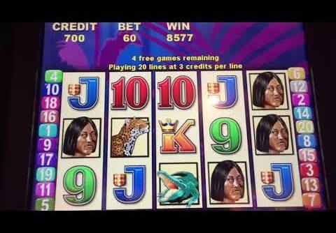 2 Aristocrat BRAZIL Slot Bonuses Low Bets BIG WINS