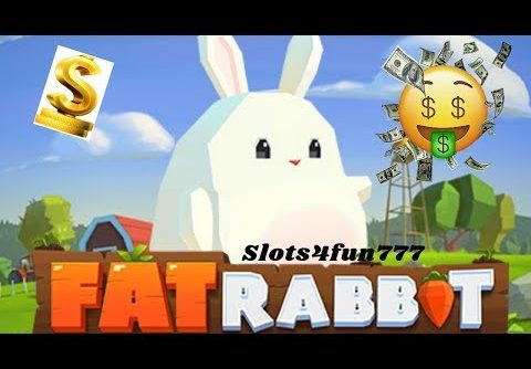 Insane win on Fat Rabbit (Push Gaming) Online Slot