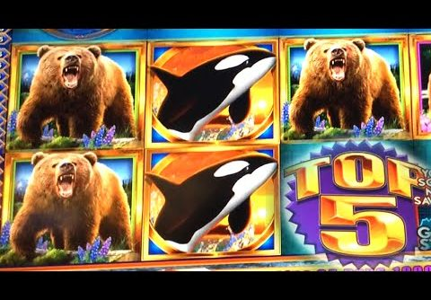 SUPER BIG WIN ~ 5 Bears on Kodiak Island Slot Machine Bonus TOP 5!!