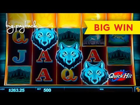 WOW, WHAT A BONUS! Quick Hit Wolf Mountain Slot – BIG WIN!
