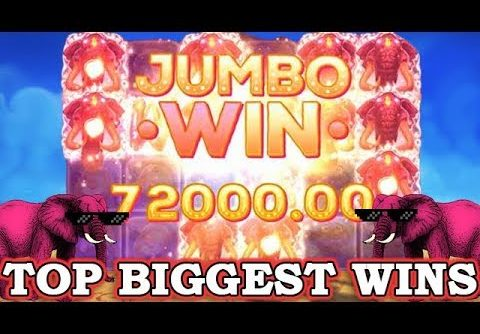 TOP 5 BIGGEST WINS ON PINK ELEPHANTS slot – RECORDS BONUSES! ONLINE CASINO!