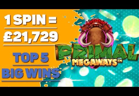 🔥MUST SEE🔥 Primal Megaways slot Big Wins | Online Casino Jackpots | Biggest Insane Win Real Money