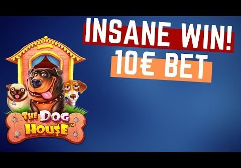 RECORD WIN!!! THE DOG HOUSE BIG WIN – Epic Win on Online Slot from Kasinokeisari