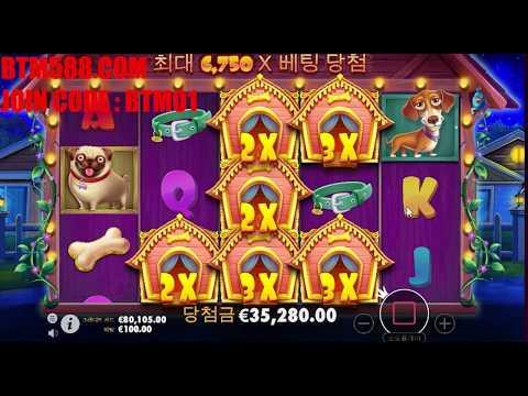 the dog house slot machine mega win !! x832 big jacpot  !! 더 도그 하우스 슬롯머신 잭팟 832 배당 !!