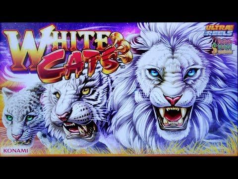 SUPER BIG WIN on WHITE CATS SLOT POKIE BONUSES by KONAMI PECHANGA CASINO